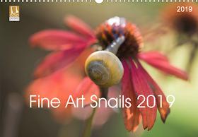 Fine Art Snail 2019 Calendar !!