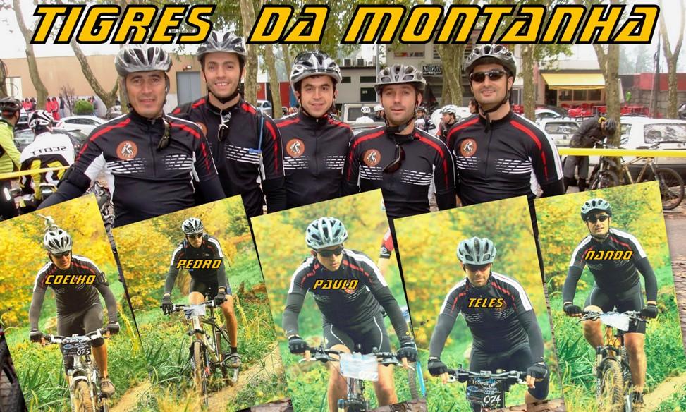 Tigres da montanha