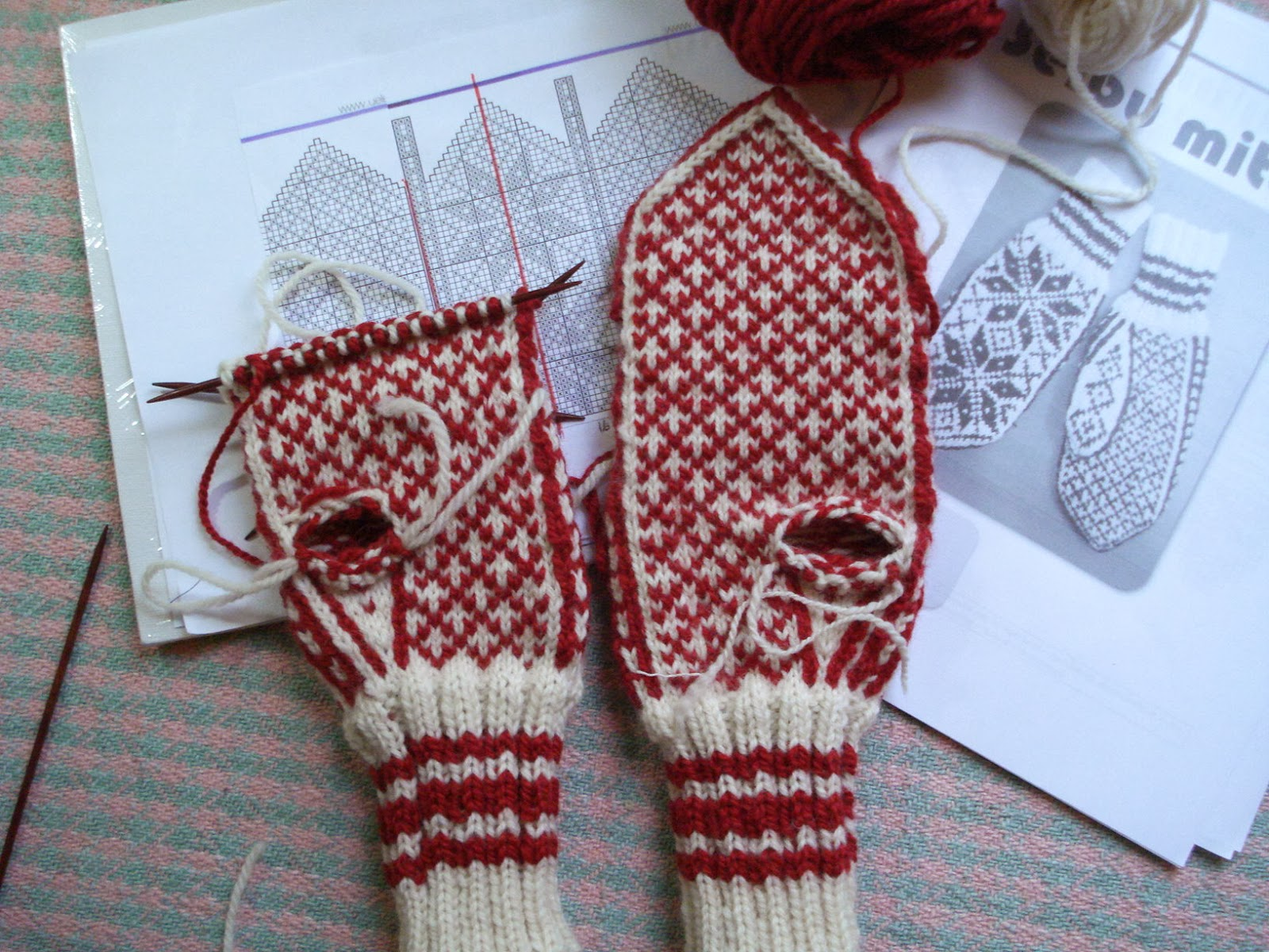 Norwegian mittens | 100-Mile Wear