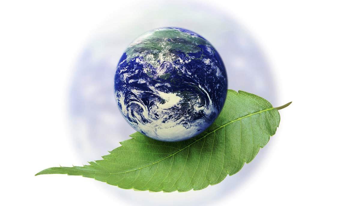инструкция по экологической декларации