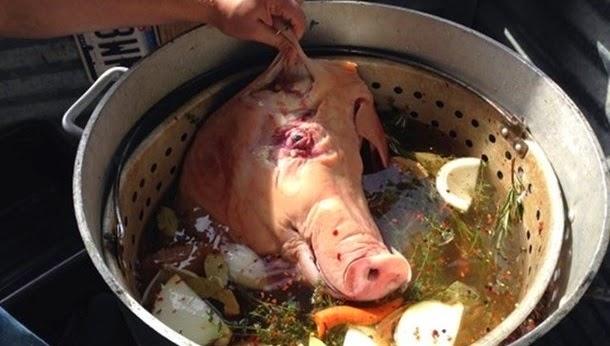 Uma deliciosa cabeça de porco