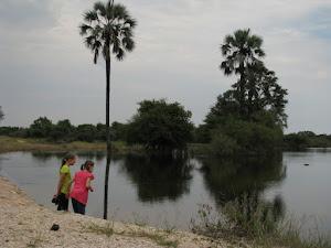 Oorvloedige reën 2012. Die omuramba by Tsintsabis het water!