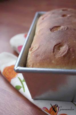 Gourmandise Bread kefir levain
