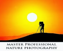 Outdoor Nature Photography Course