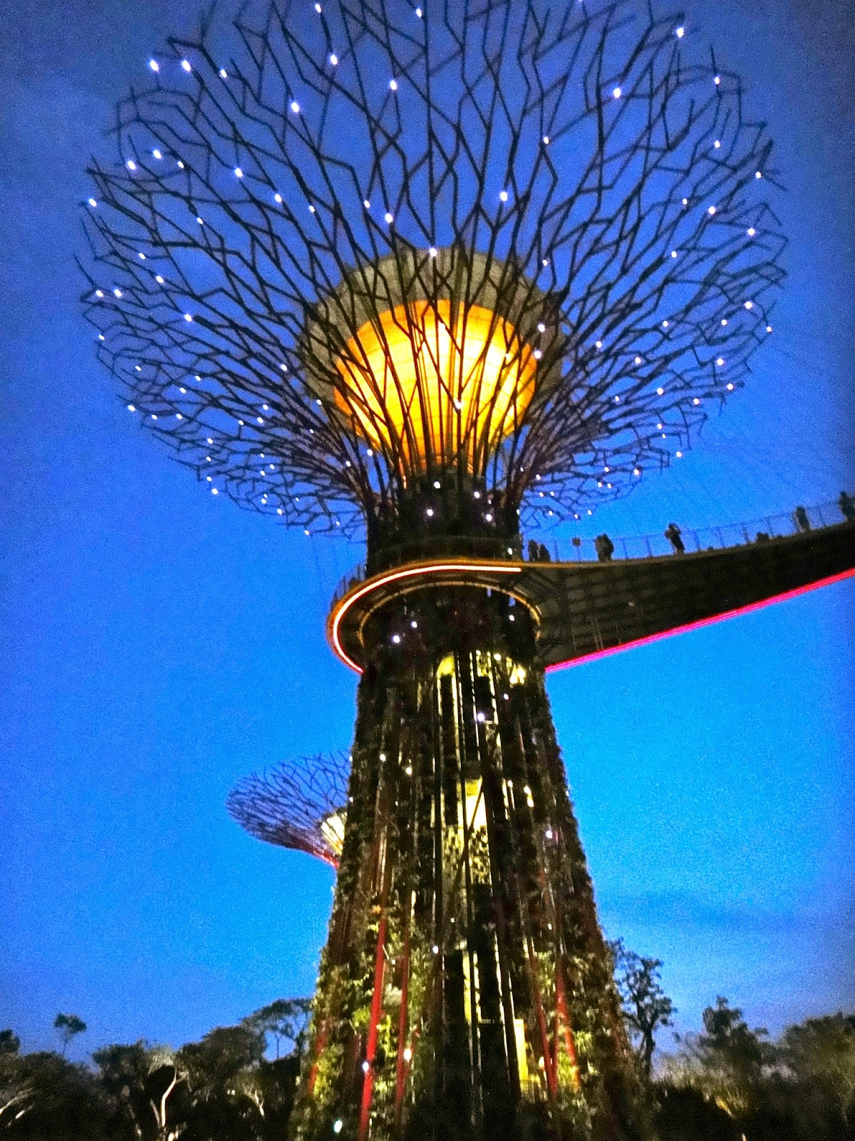 Supertrees at night, Gardens by the Bay Singapore