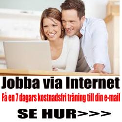 Jobba med sfm affärskoncept - Svensk video info