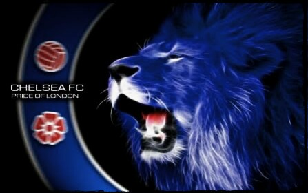 Real Lion With Logo Chelsea Fc Wallpapers