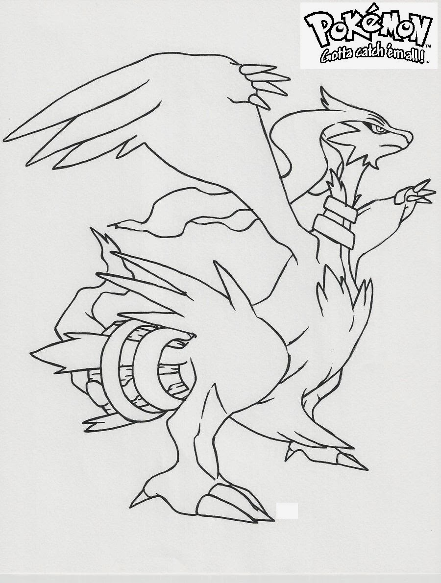 Legendary Reshiram Pokemon white