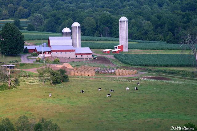 Bradford County, PA farm