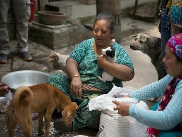 La mujer que ayuda a perros tras el terremoto de Nepal