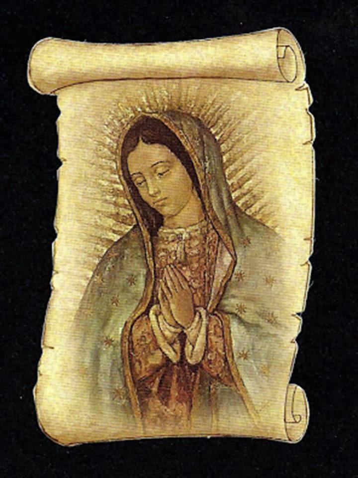 A la virgen de guadalupe para agradecimiento de ayudas oraciones e im genes - Images of la virgen de guadalupe ...