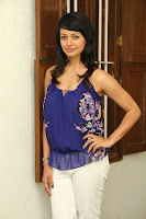 actress pooja kumar latest Pictures .jpg