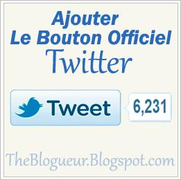 Bouton Officiel Twitter