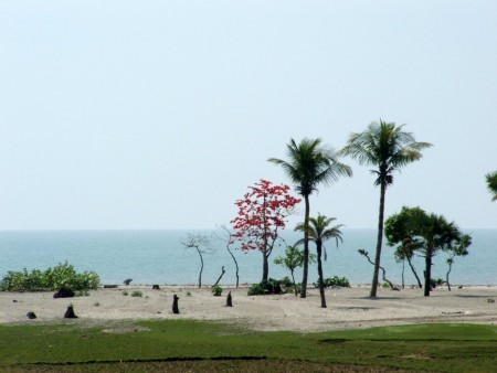 Beautiful Bangladesh Kuakata Beach