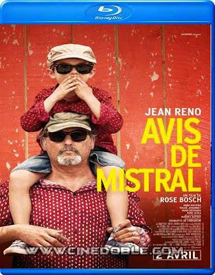 avis de mistral 2014 720p espanol subtitulado Avis de mistral (2014) 720p Español Subtitulado