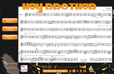 "Avicii, ""Hey brother"""