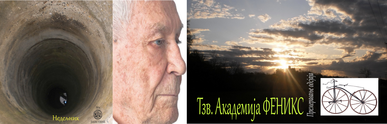 Академија ФЕНИКС