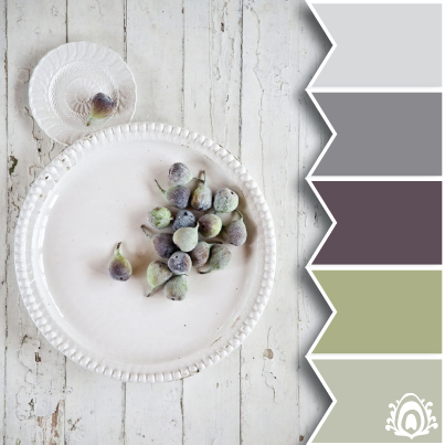 figs tones color palette pastel feather studio