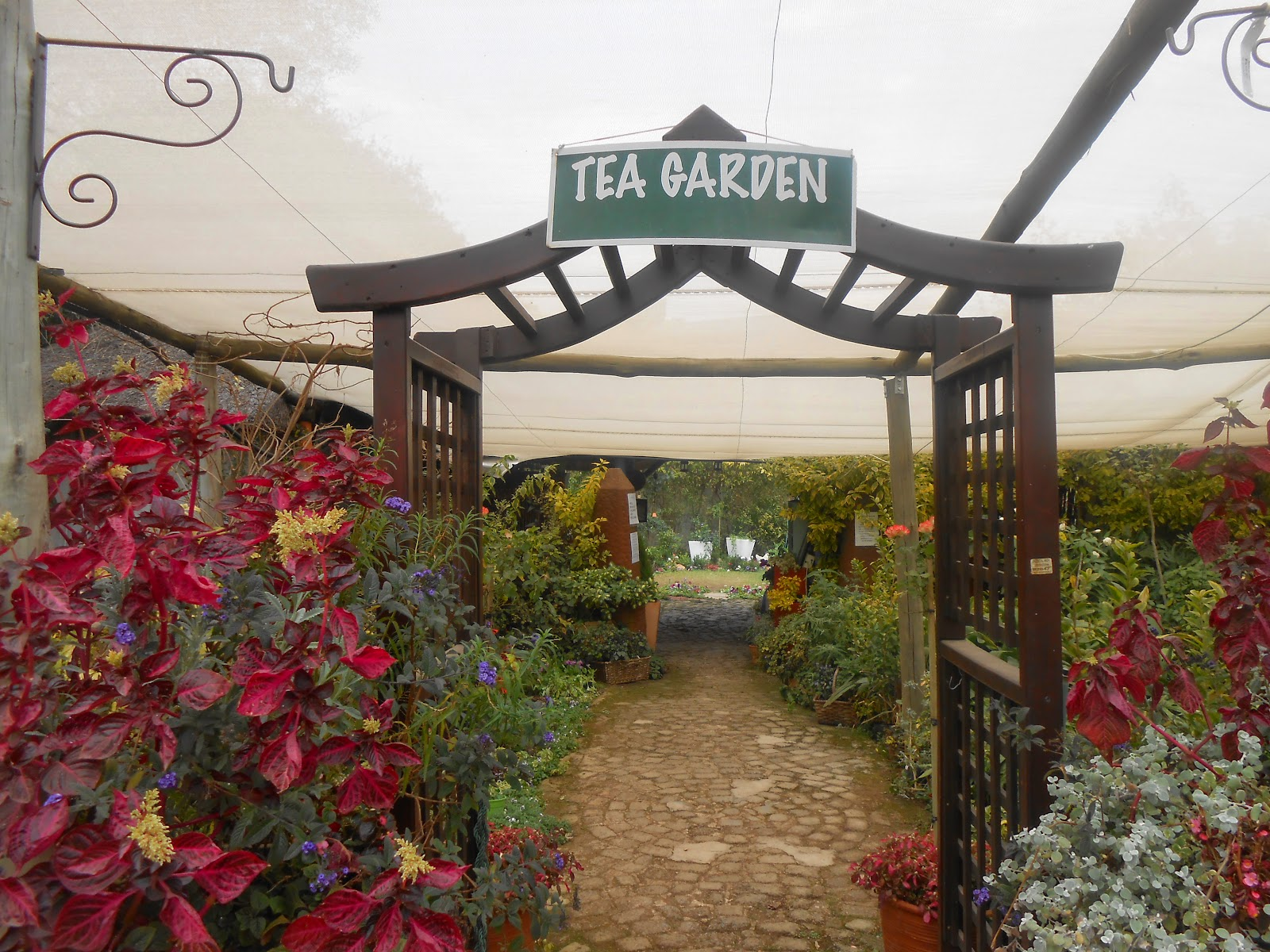 Past Times- Authentic English Tea Garden. | Twiggly Toad Travels