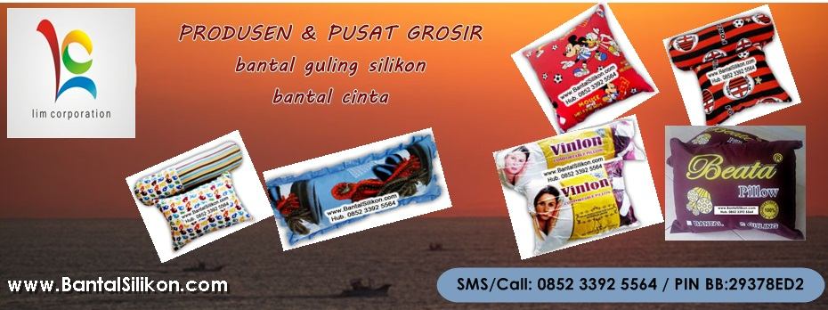 Bantal Guling Silikon