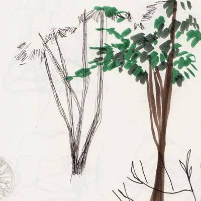 Skizze Bäume