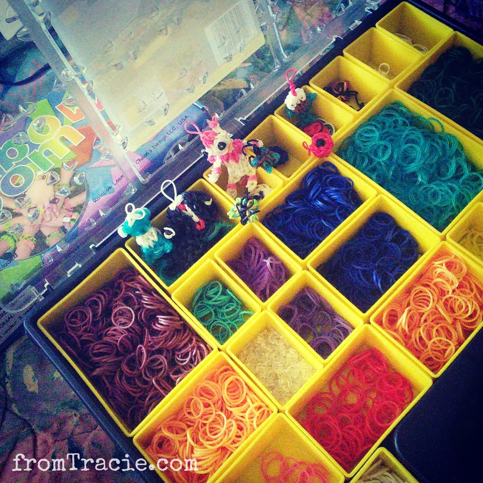 Rainbow Loom Bands Storage Case