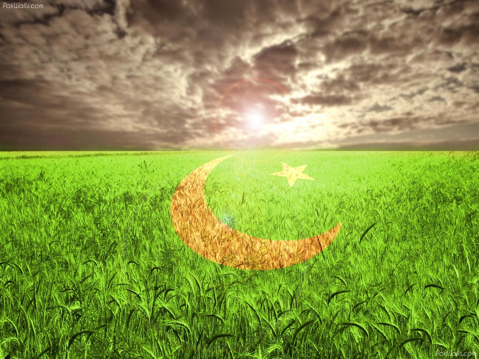http://4.bp.blogspot.com/-I9tX4g5RJq4/UCRoYn-VKmI/AAAAAAAAERw/GKNa3e1FqNg/s1600/Pakistani-flags-wallpapers+%285%29.jpg