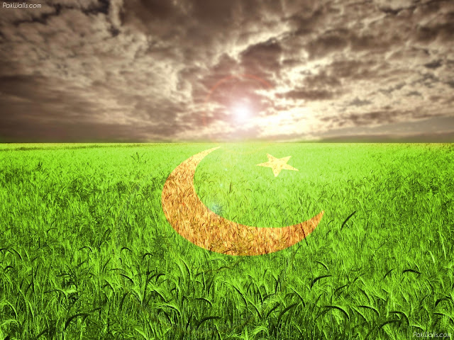 Impressive Searches related to pakistani flags | pakistani flags wallpapers  640 x 480 · 145 kB · jpeg