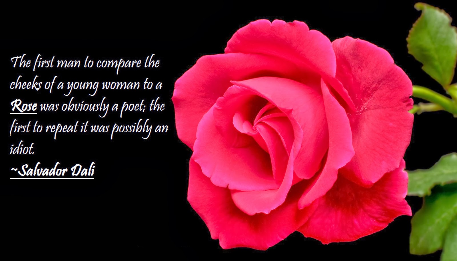 happy rose day 2014 wallpaper with saying quotes