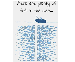 World of finance plenty of fish for Plenty of fish full site