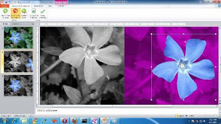 Creating Transparent Picture from powerpoint 2010