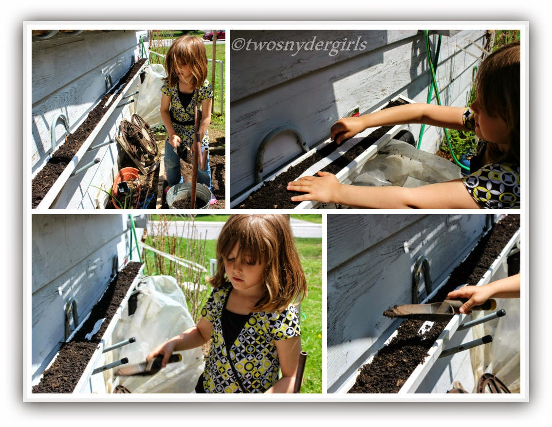 Young girl planting radishes in a container garden