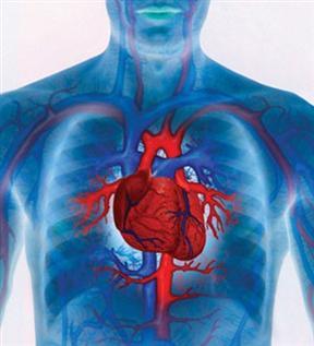 DIABÉTICOS IMPACIENTES: ¿Qué tiene que ver la diabetes con