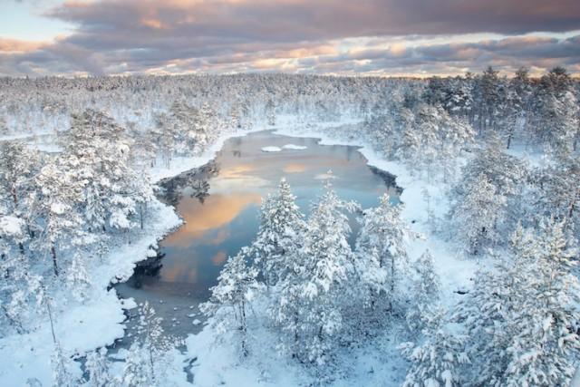 Estonia - 19 Breathtaking Photos Of Winter Wonderlands Around The World