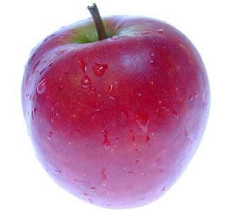 Dieta ovolactovegetariana equilibrada