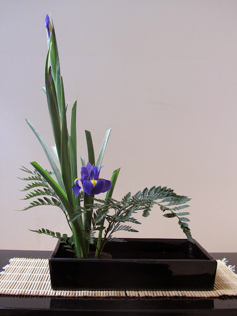 my second Kado arrangement, with purple irises
