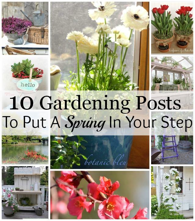 Lots of gardening inspiration for spring to get you in the mood for planting!