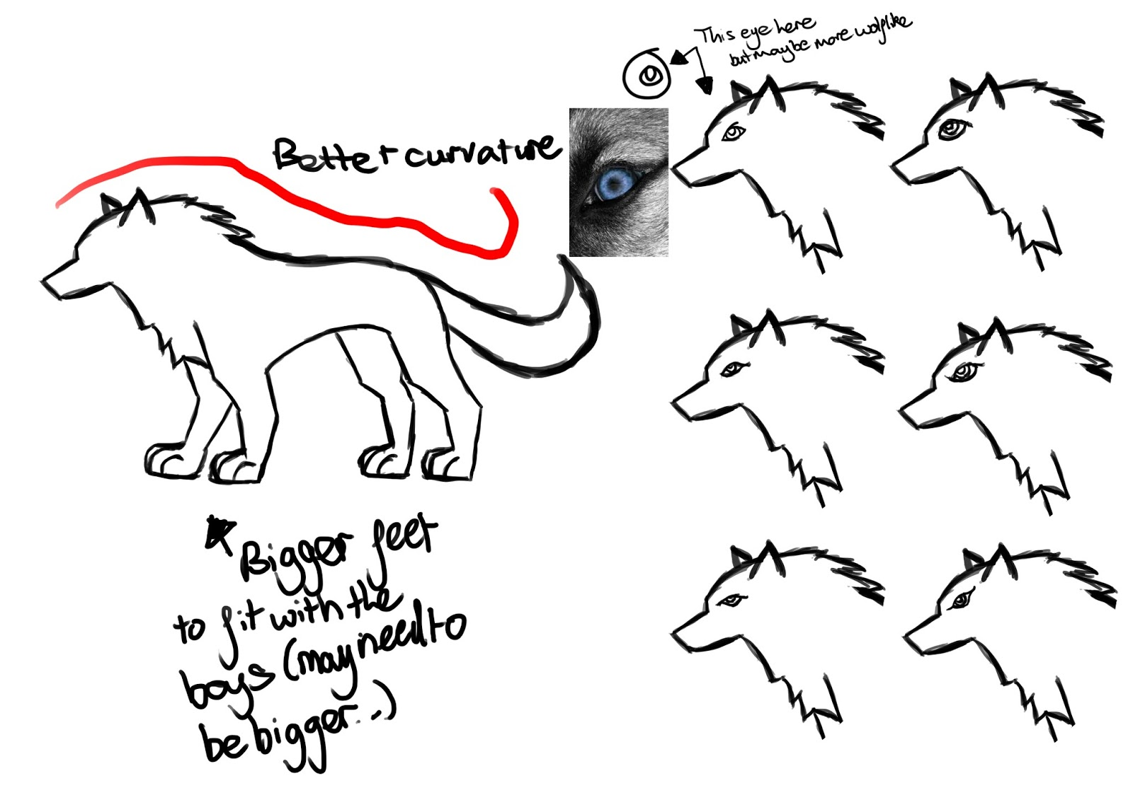 Maxs Blog Working Into The Design Of The Wolf
