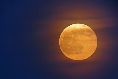 http://www.birddigiscoper.com/images/moonrise.jpg