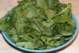 stevie, stevie verde, stevie proaspata, retete cu stevie, preparate din stevie, retete si preparate culinare din stevie,