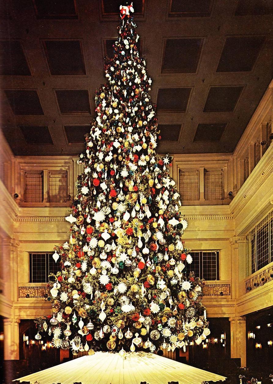 Pleasant Family Shopping: December 2011