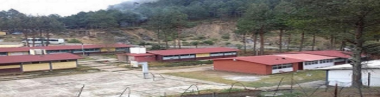 ESCUELA SECUNDARIA TÉCNICA AGROPECUARIA No. 137