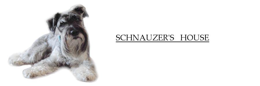Schnauzer's house