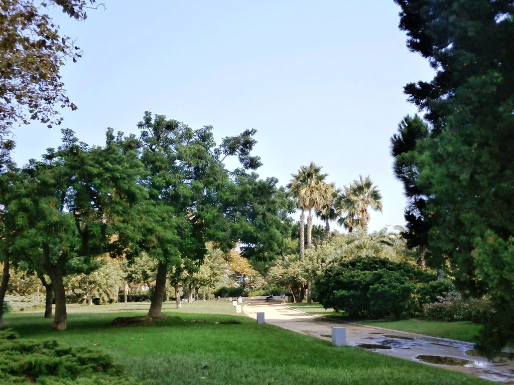 Parc de la Nova Icària, Barcelona -AcericoPop-
