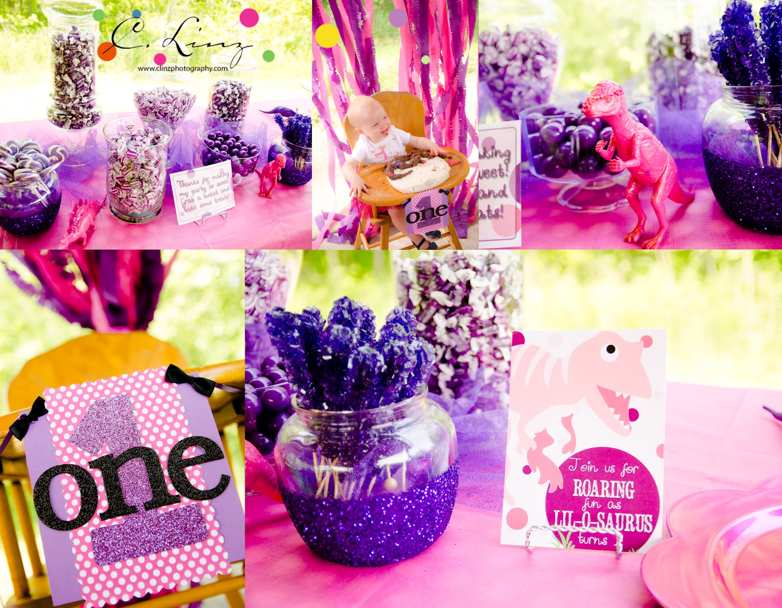 C Linz Photography {GLAM} Dinosaur 1st Birthday Party