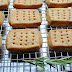 Rosemary Shortbread Cookies – Not for Nothing