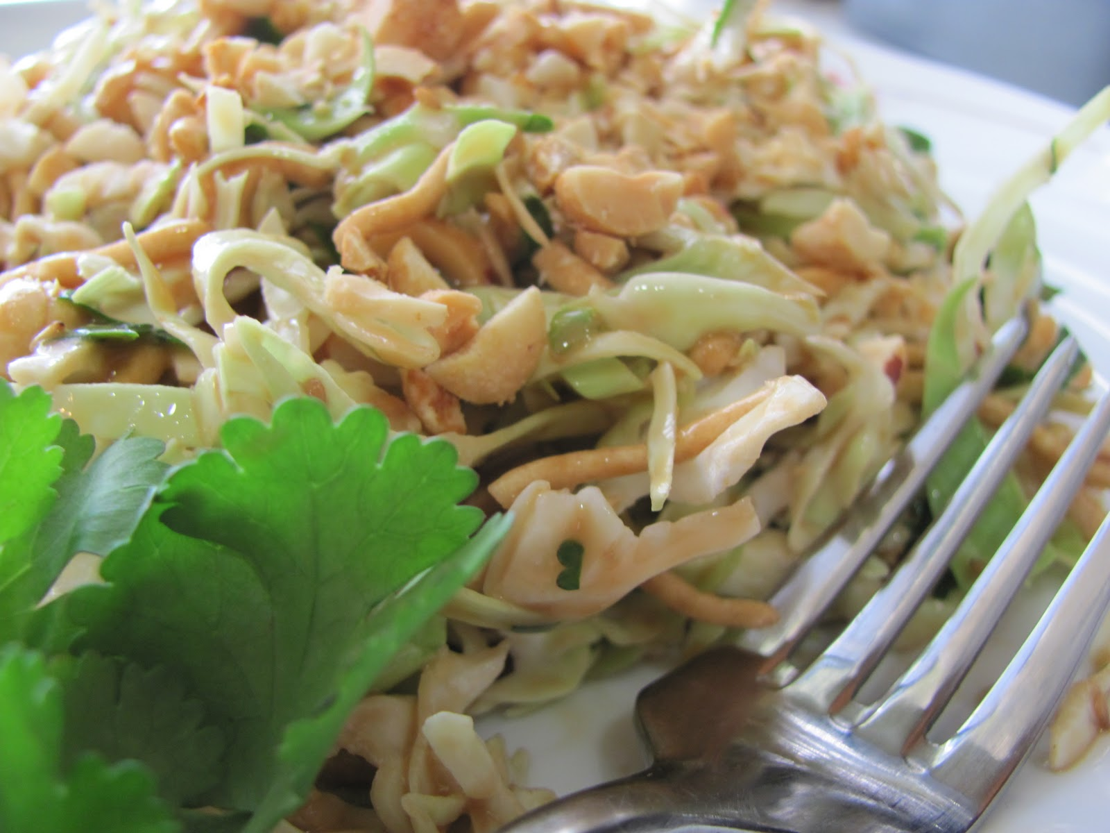 Running Upward: Homemade Thai Crunch Salad (seriously, MAKE THIS!!)