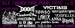 D.I.Y. HARDCORE PUNK FEST VOL. 12