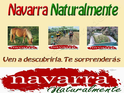 Los Datos de Ocupación de Casas Rurales en Comarca Urbasa Estella en Navarra