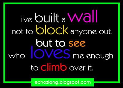 i've built a wall not to block anyone out. but to see who loves me enough to climb over it